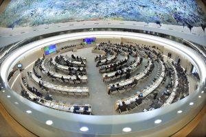 Informe a la Sección de los Derechos Humanos de la ONU